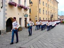 militären ståtar Royaltyfria Bilder