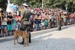 Militären ståtar av självständighetsdagen i Rio de Janeiro, Brasilien royaltyfria foton