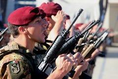 Militärfallschirmspringer Stockbild