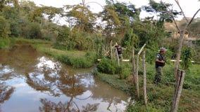 Militärpolizei der Umwelt von Minas Gerais Inspecting stockbild