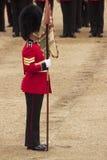 Militair op Parade Royalty-vrije Stock Foto's