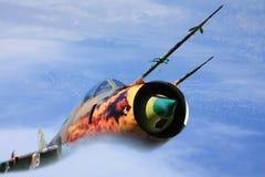 Militair vliegtuig Stock Afbeelding