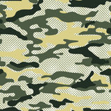 Militaire camoachtergrond Stock Afbeelding
