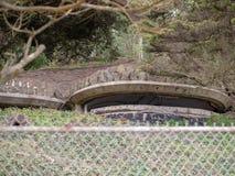 Militaire die bunker in een heuvel voor staalomheining wordt verborgen royalty-vrije stock foto's