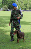 Militaire hond opleiding Stock Afbeelding