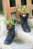 Militaire laarzen en bloemen Royalty-vrije Stock Afbeelding