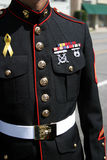 Militaire mens Royalty-vrije Stock Foto's