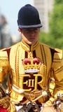 Militaire musicus royalty-vrije stock afbeelding