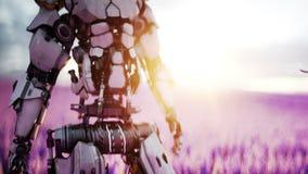 Militaire robot, cyborg met kanon op lavendelgebied concept de toekomst Realistische 4K animatie stock videobeelden
