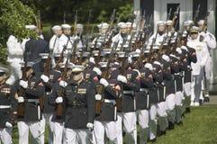 Militaire takken Royalty-vrije Stock Afbeelding