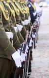 Militairen op een rij. Stock Fotografie