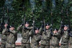 Militairenbegroeting van eer Royalty-vrije Stock Foto's