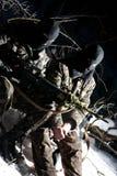 Militaires doublement armés. Images libres de droits