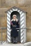 Militairwacht bij het Kasteel van Praag - oriëntatiepuntaantrekkelijkheid in Praag, Tsjechische Republiek Royalty-vrije Stock Foto