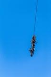 Militares atados soldados del helicóptero del vuelo de la cuerda Fotografía de archivo