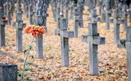 Militarny cmentarz Zdjęcie Stock