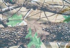 Militarny tekstura kamuflażu tło Zdjęcia Royalty Free
