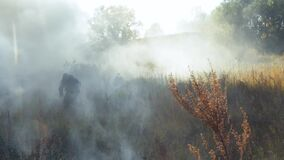 Military action in the forest. Tactical paintball game. Black smoke. Paintball players are hiding in the smoke. Special