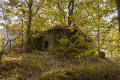 Military bunker in forest from World War II stock image