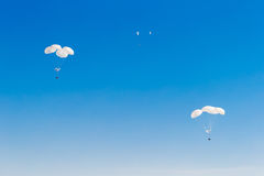 Military cargo parachute flying in the sky. Royalty Free Stock Photo
