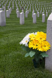 Military Cemetert Stock Photo