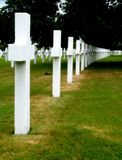 Military cemetery. White crosses in an american military cemetery Royalty Free Stock Image