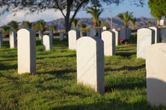Military Cemetery. Nameless military grave stones in a cemetery Royalty Free Stock Photo