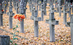 Military Cemetery. Grave crosses on old Powazki Military Cemetery in Warsaw, Poland Stock Photo