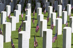 Military Cemetery with American Flags Stock Images