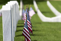 Military Cemetery with American Flags Stock Image