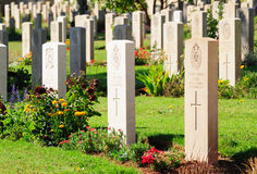 Military cemetery. Stock Images