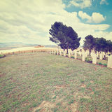 Military Cemetery Stock Photos