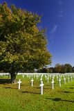 Military Cemetery Henri-Chapelle, Belgium. White crosses under a tree at the American military cemetery Henri-Chapelle near Aubel in Belgium, some foliage in the Royalty Free Stock Images