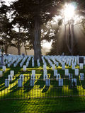 Military Cemetery USA. A view of the Military Cemetery at the Presidio San Francisco. Sun filtering through trees, long shadows Stock Images