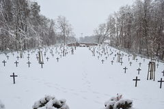 Military Cemetery, War Cemetery, War Cemetery Winter, Military Cemetery Winter, Cemetery Soldiers Winter Snow Royalty Free Stock Image