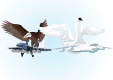 Military and civil aviation. Military and commercial aircraft against a background of flying eagle and a swan with outstretched wings Stock Image