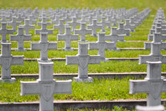 Military crosses in rows Stock Photo