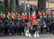 Military drum horse taking part in the Trooping the Colour military ceremony at Horse Guards, London UK royalty free stock photography