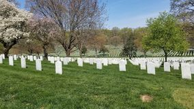 Military grave markers royalty free stock images