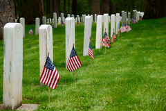 Military Grave Stones. U.S. Military Fort Luis Washington National Cemetery Grave Stones with United States Flags on Memorial Day royalty free stock images