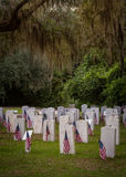 Military Graves and Flags stock images