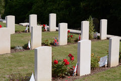 Military graves with Union Jack flags. Rows of military graves with Union Jack flags Stock Photography