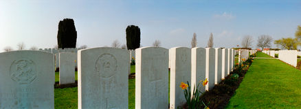 Military cemetery of the first world war stock photography