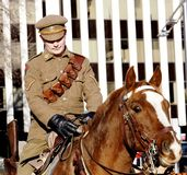 Military On Horseback In Remembrance Service royalty free stock photography