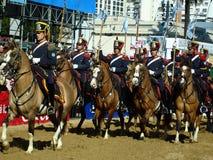 Military horses Stock Image