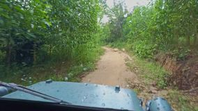 Military Jeep Drives along Dirty Ground Road among Jungle. Military blue jeep with wet front glass drives along dirty ground road among wet tropical jungle in stock footage