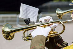Military musician blowing his gold trumpet Royalty Free Stock Photos