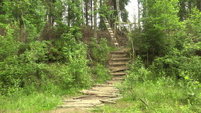 Military observation tower for in the forest. 4K. stock footage