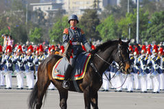 Military parade. Female soldier mounted on military parade Stock Photo