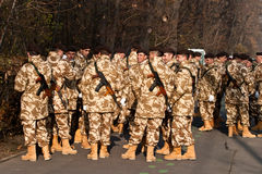 Military parade Royalty Free Stock Photos